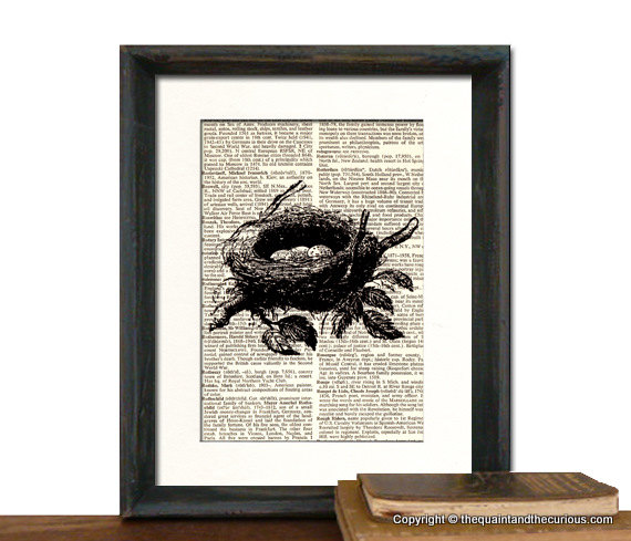 Bird Nest Art Print - Mothers Day Fathers Day Graduation Gift Present - Home Office Decor MATTED